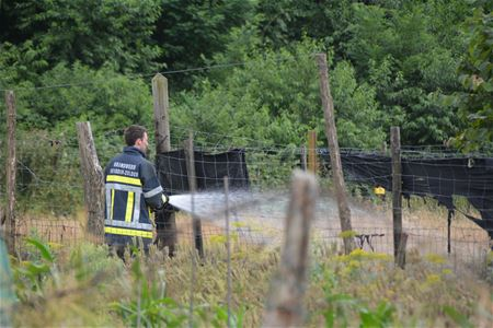 Grasbrand in de Schootstraat
